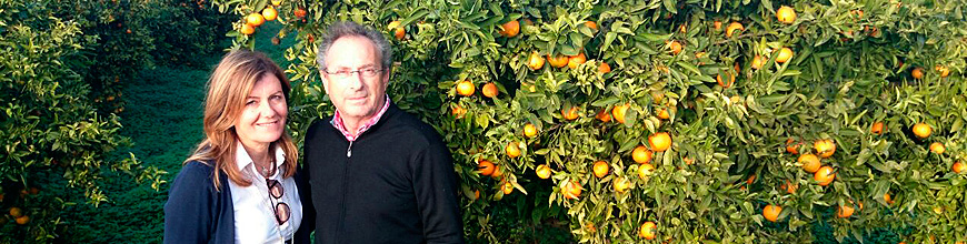 Oranges Quique -About us
