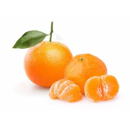 10 kg Orangen für Saft und Mandarinen