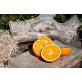 Bio oranges 15kg