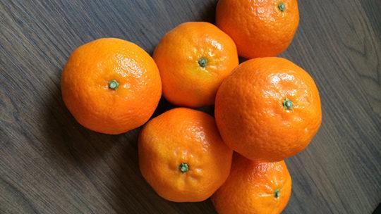 Kalorien Mandarine, der leichteste Snack