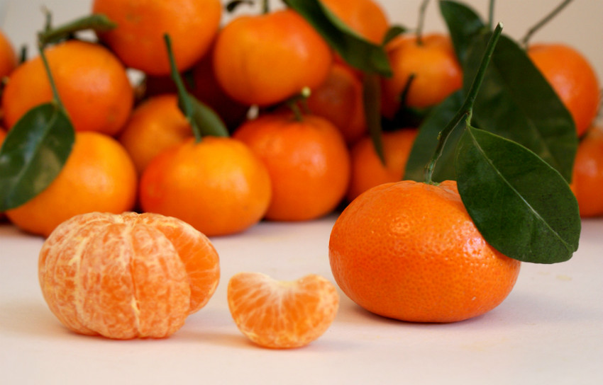 Tangerine: a perfect citric fruit for your health