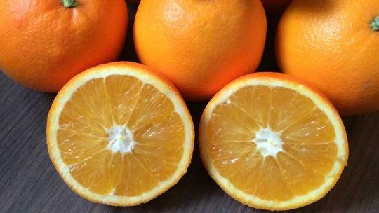 Was Sie über Orangen Kalorien kennen sollten