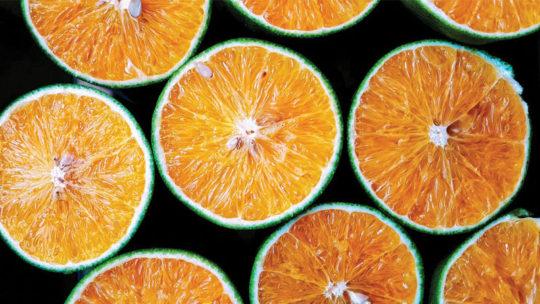 Kandierte Orangenschale: Die köstlichste natürliche Süßigkeit