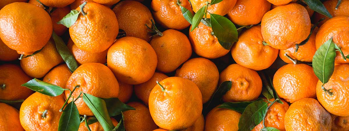 Buy tangerines in Oranges Online