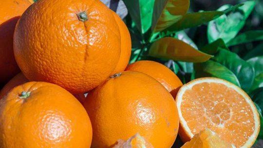 Sind Orangen gut bei Diabetes?